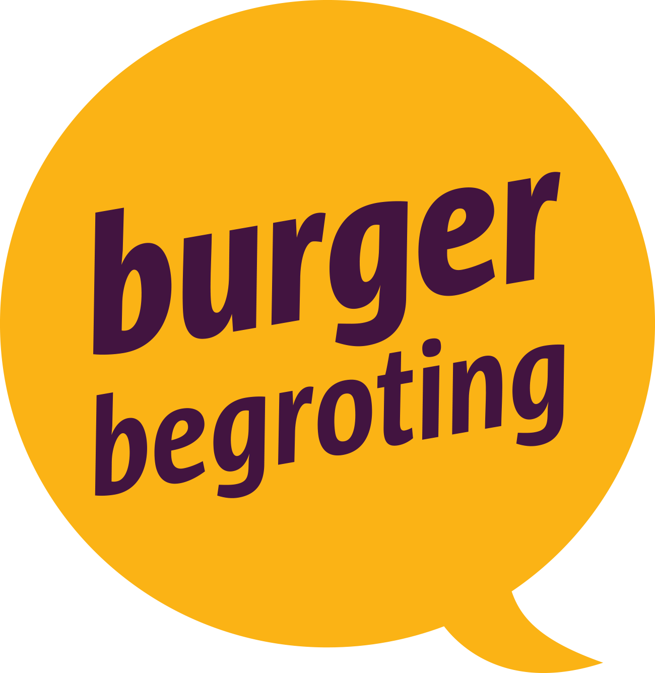 Logo Burgerbegroting District Antwerpen